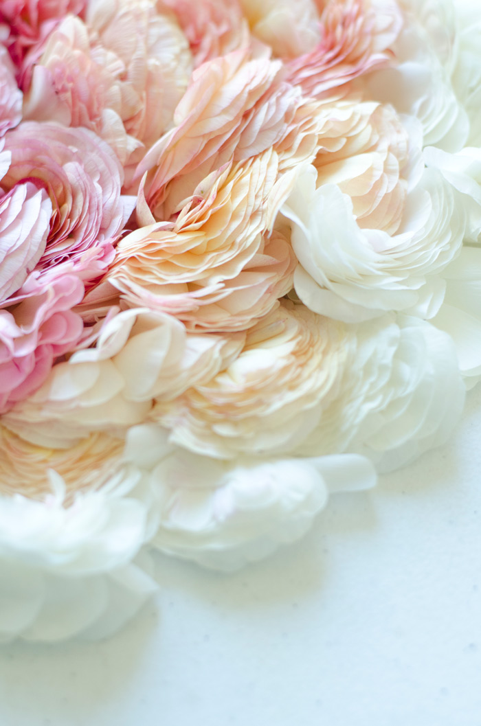 flower stylist ombre of flowers petals