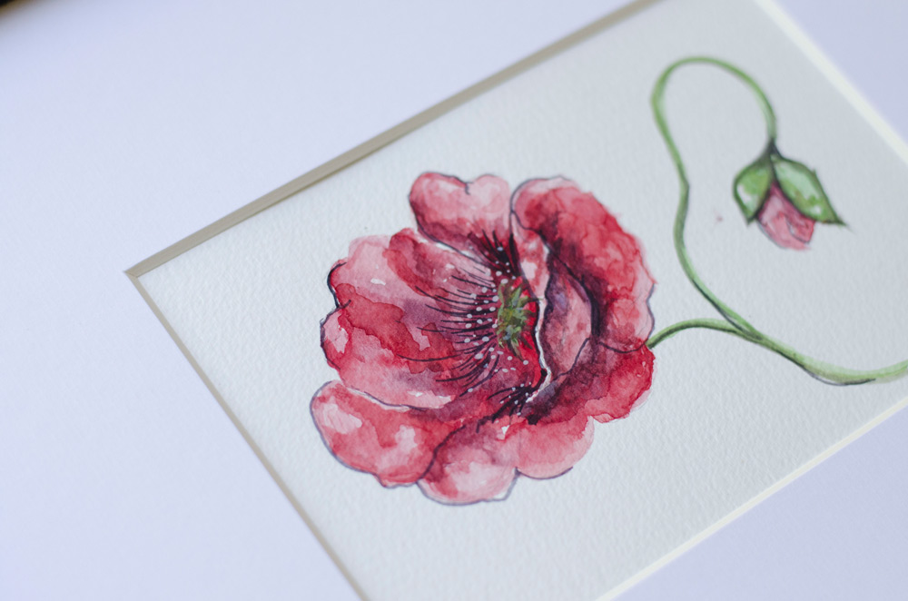 watercolor poppy floral botanical print